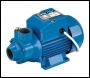 Clarke BIP1000 1 inch  Electric Water Pump