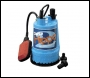 Clarke 1 inch  Water Pump with float switch - Hippo 2A