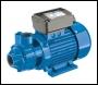 Clarke BIP1500 1 inch  Electric Water Pump
