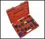 Sealey VS0014 Cooling System Pressure Test Kit 13pc