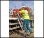 Youngman Vehicle Access Ladder - Code 570160