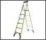 TB Davies Little Giant MightyLite Step Ladder 6 Tread